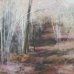 Woodland walk. Acrylic and mixed media on linen. 90cm x 90cm. 2013. (sold).